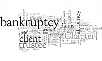 What is a Bankruptcy Trustee and What Role Do They Play?